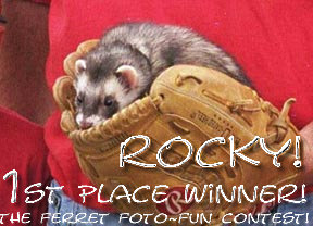 Rocky's First Place